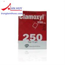 Clamoxyl Sac.250mg