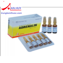 Adrenalin Inj.1mg/1ml VINPHACO