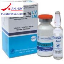 Thuốc Cefotaxim 1g TW1